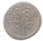 reverse: Impero Romano. Domiziano. 81-96 d.C. Quadrante. AE. D/ IMP DOMIT AVG GERM Testa elmata di Minerva a destra. R/ Pianta di ulivo, ai lati SC. RIC 428. Peso gr. 3,01. Diametro mm. 18,50. qSPL.___