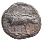 reverse: Impero Romano - Traiano. 98-117 d.C.Quadrante. D/ Busto di Ercole verso destra. R/ Maiale andante verso destra, SC In esergo. Zecca di Roma. Peso 2,2 gr. Diametro 15 mm. RIC.702.BB