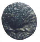 obverse: Mondo Greco. Calabria Tarentum. 281-209 a.C. Ae. D/ Conchiglia. R/ Delfino e cavaliere. Peso 1,55 gr. Diametro 17,50  mm. qBB.§