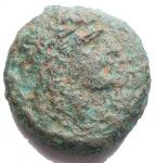 D/ Mondo Greco - Campania. Neapolis. ca 300-275 a.C.Ae. D/ Testa laureata di Apollo a destra. R/ Toro androcefalo a destra, sopra astro. Peso gr. 5,53. Diametro mm. 16,9.qBB.R. Patina verde