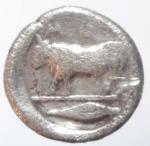 reverse: Mondo Greco. Lucania. Poseidonia. 475-450. a.C. Diobolo. Ag. D/ Nettuno avanza verso destra. R/ Toro stante a sinistra. Peso 1,00 gr. Diametro 9 mm. MB. Patina scura.__