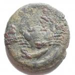 D/ Mondo Greco - Sicilia. Agrigento. Tetras, 450-430 a.C. AE. g 7.12. mm 19,1 x 20,4. qBB