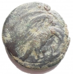 R/ Mondo Greco - Sicilia. Agrigento. Tetras, 450-430 a.C. AE. g 7.12. mm 19,1 x 20,4. qBB