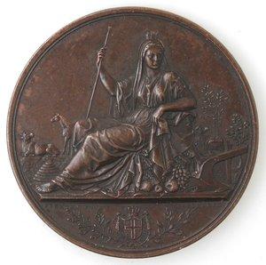 obverse: Medaglie. Portici (NA). Medaglia 1875. Ae. Per Il Concorso Agrario Regionale - Portici 1875