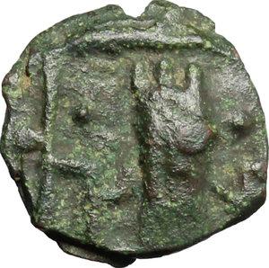 obverse: Salerno.  Tancredi (1189-1194).. Follaro