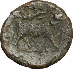 reverse: Samnium, Southern Latium and Northern Campania, Teanum Sidicinum. AE 20 mm., 265-240 a.C
