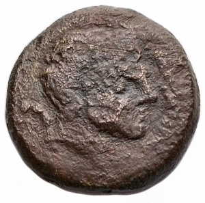 obverse: Mondo Greco - Apulia. Salapia. ca300-225 a.C.AE. D/ Testa di Pan (?) a destra.R/ Falco a destra.Cfr. Garrucci T. XCIII, 37.Pesogr. 2,6. Diametro mm.16,2.MB+. RR.