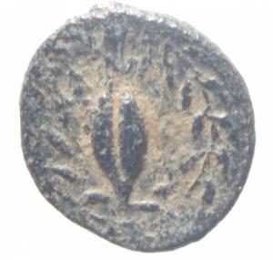 reverse: Mondo Greco. Aeolis. Elaia. ca 340 a.C.Ae. D\ Testa elmata di Atena a sinistra. R\ E-Λ-A-I chicco d  orzo in corona d  alloro. SNG Cop. 169. Peso gr. 1,00. Diametro11,00 mm. BB+.