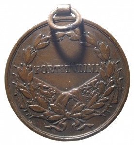 reverse: Medaglie.Austria.Carlo I. Ae.FORTITVDINI in corona d  alloro.Peso 15,50 gr.BB+.^^^