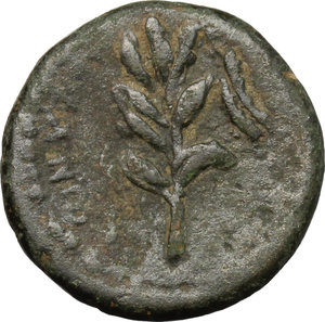 Reverse image of coin 145