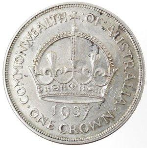 reverse: Monete Estere. Australia. Giorgio VI. 1 Corona 1937. Ag 925. Km. 34. Peso gr. 28,28. Diametro mm. 38.qFDC.