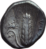 Reverse image of coin 13014