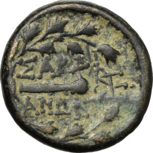 Reverse image of coin 132