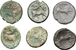reverse: Greek Italy.. Multiple lot of six (6) unclassified AE coins, including Arpi and Neapolis