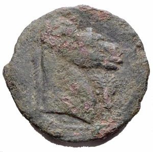 reverse: Mondo greco - Siculo puniche. Cartagine. d/ Tanit a sn. dietro simbolo da identificare. r/ Protome di cavallo a ds. davanti palma, sotto punto. gr 5,42. mm 20,4. qBB. Raro