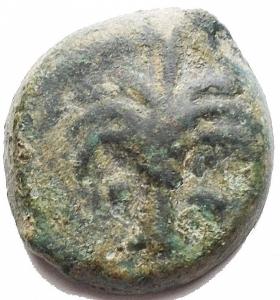 obverse: Mondo Greco -Sicilia Punica.AE 18,7 x 20,2 mm. 300-250 a.C.D/ Albero di palma.R/ Testa di cavallo a destra.Muller II, 104.gr 6.47.BB. Patina verde