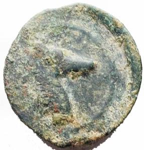 reverse: Mondo Greco -Sicilia Punica.AE 18,7 x 20,2 mm. 300-250 a.C.D/ Albero di palma.R/ Testa di cavallo a destra.Muller II, 104.gr 6.47.BB. Patina verde