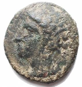 obverse: Mondo Greco - Siculo Punica. dopo il 400 a.C.Ae. D/ Testa di Kore verso sinistra. R/ Cavallino e dietro una palma. Peso 3,04 gr. Diametro 15,04 x 16,3 mm.BB. Patina verde