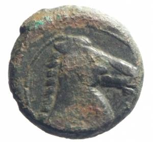 reverse: Mondo Greco. Sardegna Punica. Prima del 227 a.C. AE20. D/ Testa di Tanit verso sinistra. R/ Protome equina. Piras tipo A 1. Peso 4,50 gr. Diametro 20,55 mm.qBB. Patina. R.
