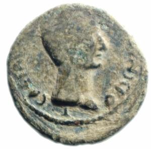obverse: Impero Romano. Augusto. 27 a.C-14 d.C. Asse, Ae. 6 a.C. D/ CAESAR AVGVST PONT MAX [ ]. Testa nuda a destra. R/ SEX NONIVS QVINCTILIAN III VIR AAA FF ? intorno a grande SC. RIC 439. Peso gr. 10,20. Diametro mm. 25.00. Bel BB. . R.