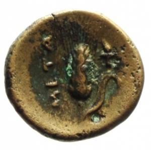 reverse: Mondo Greco. Lucania. Metaponto. 275-250 a.C. Ae 16. D/ Testa di Ercole con pelle di leone verso destra. R/ Spiga di grano a destra META. ANS2n567. Peso 2,65 gr. Diametro 15,78 mm. BB. Patina Verde a Smalto.§