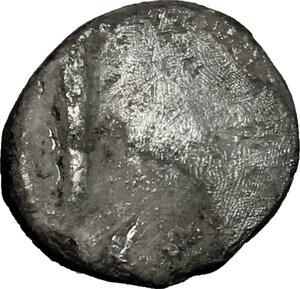 Reverse image of coin 36