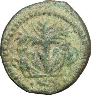 reverse: Ostrogothic Italy, Athalaric (526-534).. AE 20 Nummi (Half Follis). Rome mint