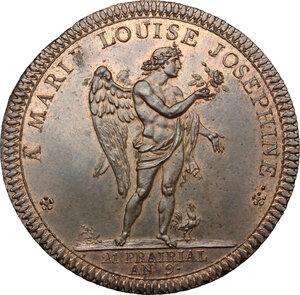 obverse: Firenze.  Ludovico I di Borbone (1801-1803), re d Etruria. Medaglia 1801 per la visita dei reali d Etruria a Parigi