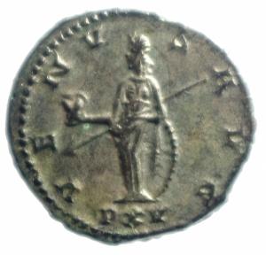 reverse: Impero Romano Salonina 254-268 d.C. Antoniniano Ag . D\ SALONINA AVG Testa diademata verso destra R\ VENVS AVG Venus in piedi verso a sinistra con scudo e lancia e una mela. RIC 86 Peso 3,65 gr Diametro 20,00 mm.SPL.
