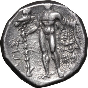 reverse: Southern Lucania, Heraclea. AR Stater, 281-278 BC