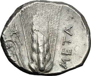 reverse: Southern Lucania, Metapontum. AR Stater, 330-290 BC