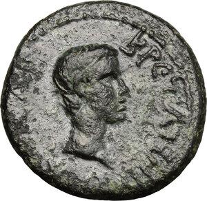 obverse: Britannicus, son of Claudius and Messalina (died 55 AD).. AE 16 mm, Aeolis, Aegae mint