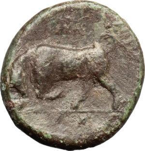 reverse: Syracuse.  Agathokles (317-289 BC).. AE, 317-310 BC