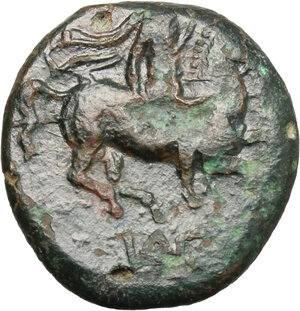 reverse: Syracuse.  Agathokles (317-289 BC).. AE 19mm