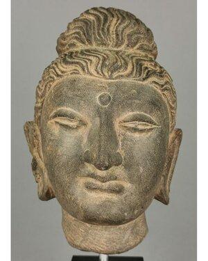 obverse: GANDHARA SCHIST LIFE-SIZE HEAD OF BUDDHA