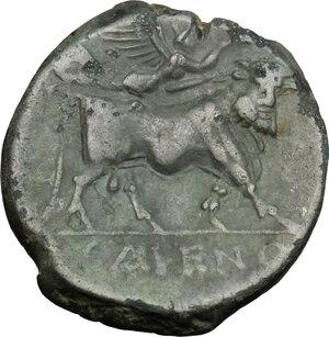 reverse: Samnium, Southern Latium and Northern Campania, Cales. AE 21 mm, 265-240 BC