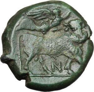 reverse: Samnium, Southern Latium and Northern Campania, Suessa Aurunca. AE 18.5 mm, c. 270-240 BC