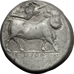 reverse: Central and Southern Campania, Neapolis. AR Didrachm, struck under Diophanes, c. 320-300 BC