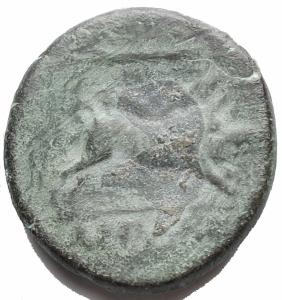 reverse: Mondo Greco - Apulia Arpi (III sec. a.C.) Obolo.D/ Testa di Zeus a sinistra.R/ Cinghiale a destra, sopra punta di freccia. AE. g8,9. mm 21,8.SNG ANS 635.BB++/BB. Bel ritratto