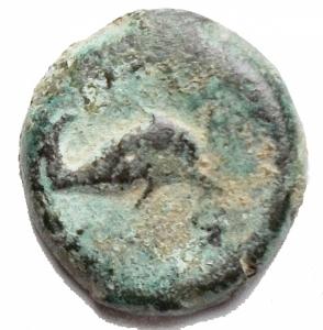 obverse: Mondo Greco - Apulia Salapia.AE. D/ Delfino a destra. R/ Delfino a destra. Rutter 689. Diametro 15,1 x 15,9 mm. Peso 3,28 gr.BB. R. Patina
