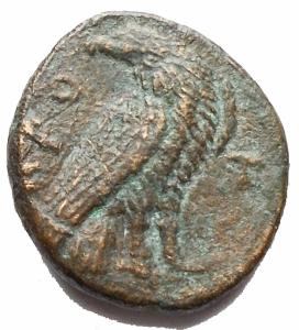 reverse: Mondo Greco - Bruttium. Crotone.ca 350-300 a.C.AE. D/ Testa di Heracles a destra, con leont. R/ Aquila a ds con testa retrospiciente. Peso g 1,987. Diametro mm 13,05 x 14,5. qBB/BB. R
