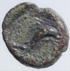 obverse: Mondo Greco.Solus. Ae. 2  - 1  Sec a.C. D/ COONTINN delfino che salta a destra R\Tonno che nuota .Peso 2,10. HGC 2, 1269; CNS I, 17. BB.RR.po