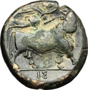 reverse: Central and Southern Campania, Neapolis. AE 19 mm. 275-250 BC