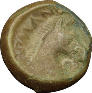 reverse: Anonymous. AE Half Unit, Neapolis mint(?), after 276 BC
