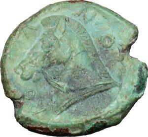 reverse: AE Half Unit, Neapolis mint, after 276 BC