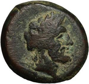 obverse: Northern Lucania, Paestum. AE 20 mm, first Punic War,  264-241