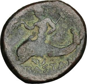 reverse: Northern Lucania, Paestum. AE 20 mm, first Punic War,  264-241