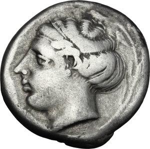 obverse: Bruttium, Terina. AR Stater, 440-425 BC