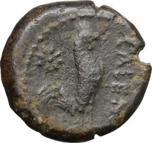 reverse: Samnium, Southern Latium and Northern Campania, Cales. AE 19 mm, circa 276-260 BC