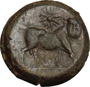 reverse: Samnium, Southern Latium and Northern Campania, Cales. AE 20mm, 265-240 BC